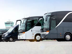 busse, sprinter, vip-liner, business-liner